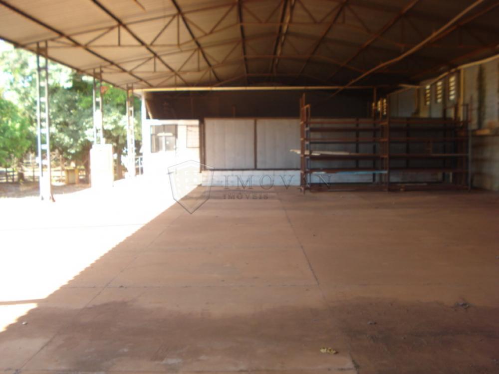 Alugar Comercial / Galpão em Ribeirão Preto apenas R$ 32.500,00 - Foto 39