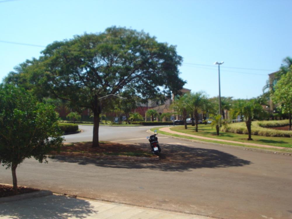 Alugar Comercial / Galpão em Ribeirão Preto apenas R$ 3.500,00 - Foto 3