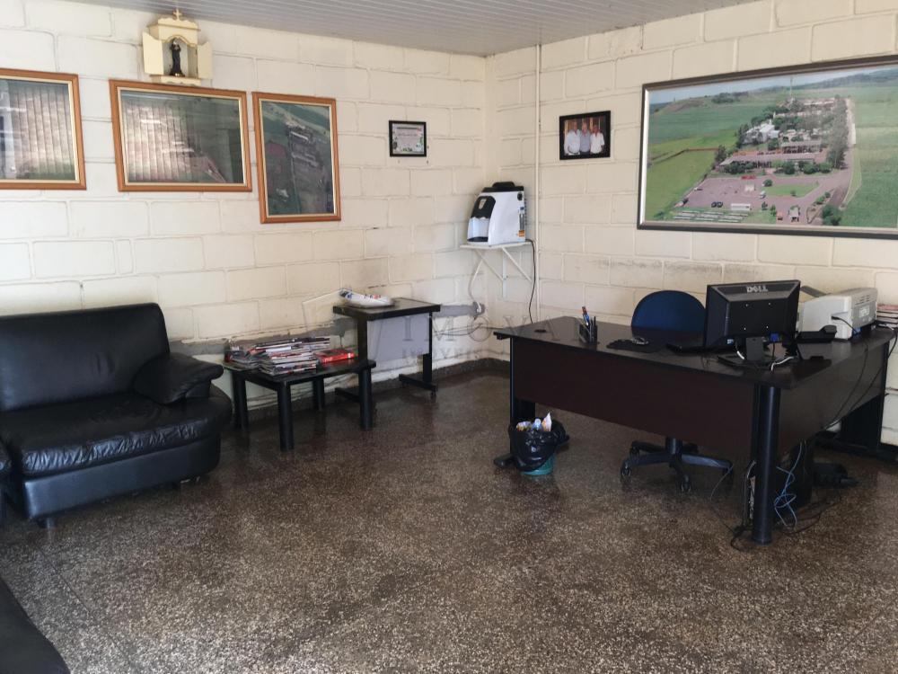 Alugar Comercial / Galpão em Ribeirão Preto R$ 39.500,00 - Foto 30