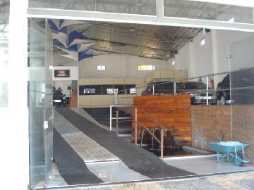 Alugar Comercial / Galpão em Ribeirão Preto apenas R$ 8.500,00 - Foto 4