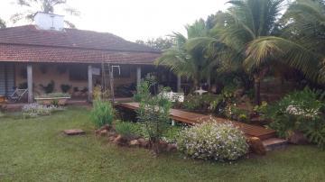 Comprar Rural / Chácara em Ribeirão Preto apenas R$ 950.000,00 - Foto 4