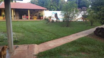 Comprar Rural / Chácara em Ribeirão Preto apenas R$ 950.000,00 - Foto 12