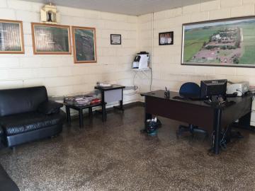 Alugar Comercial / Galpão em Ribeirão Preto apenas R$ 39.500,00 - Foto 30