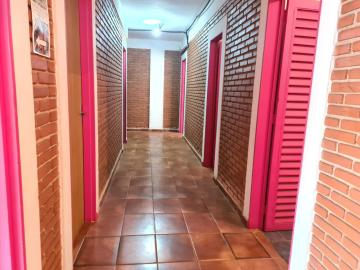 Alugar Comercial / Ponto Comercial em Ribeirão Preto apenas R$ 5.000,00 - Foto 6
