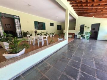 Comprar Rural / Chácara em Ribeirão Preto R$ 700.000,00 - Foto 18